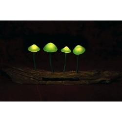 Psychodelická lampička (zelená)